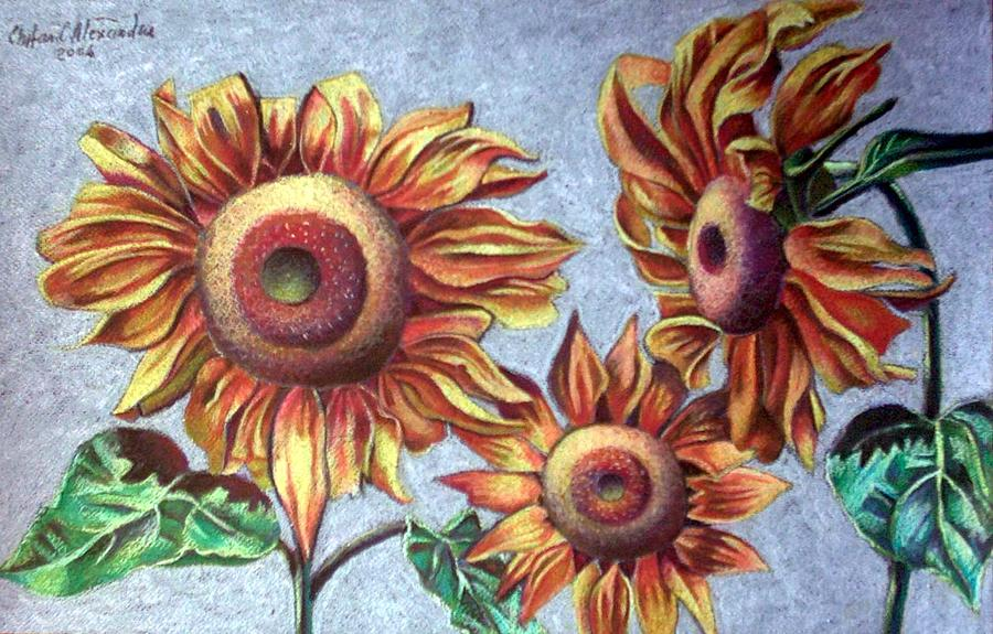 Sun Flower Painting by Chifan Catalin  Alexandru
