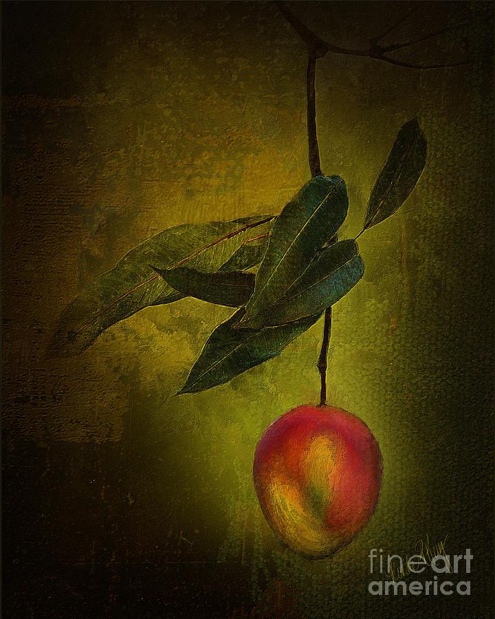 Digital Painting Digital Art - Sun-kissed Mango by Linda King