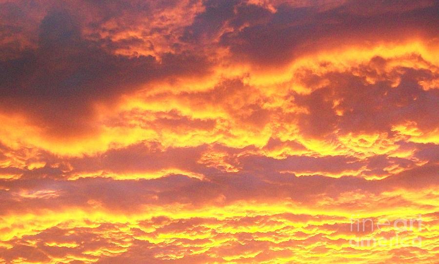 Photo Photograph - Sun On The Clouds by Marsha Heiken