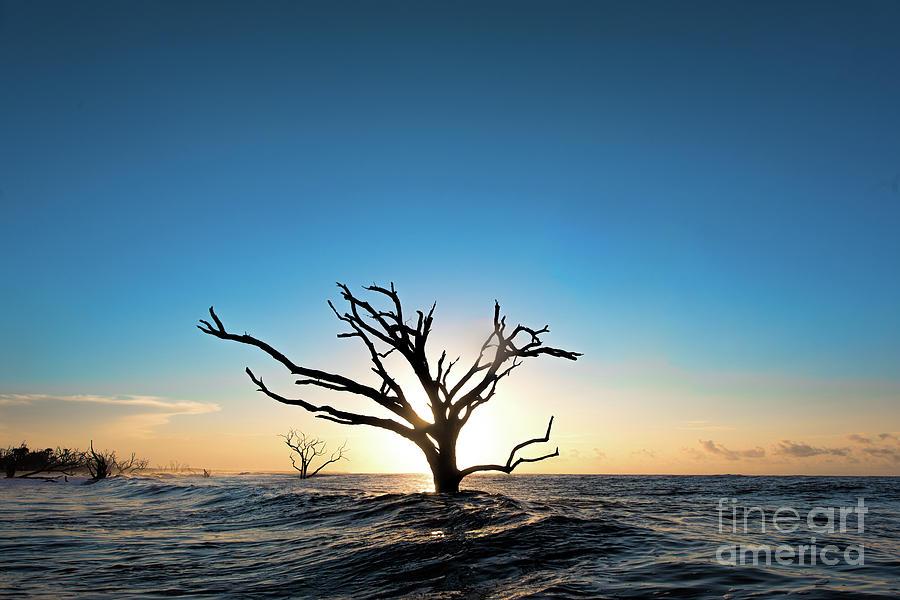 Sun Photograph - Sun Salutation by Robert Loe