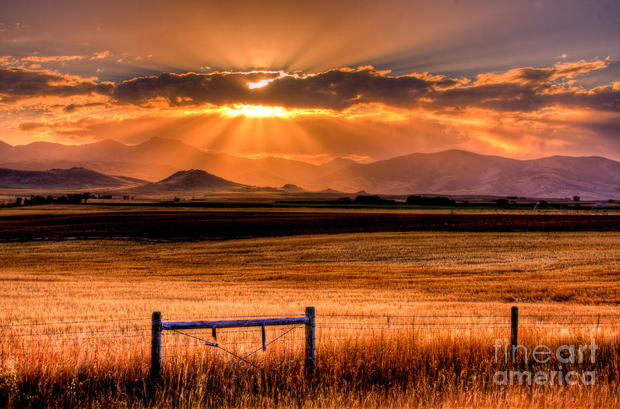Setting Photograph - Sun Sets On Summer by Katie LaSalle-Lowery