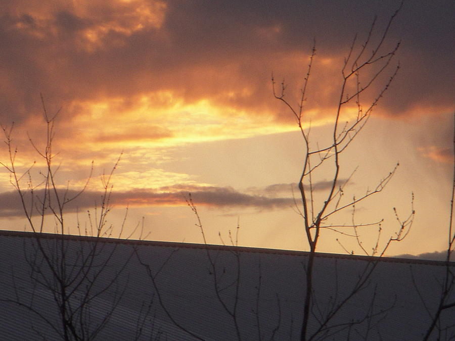 Landscape Photograph - Sun setting Orange by Deborah Finley