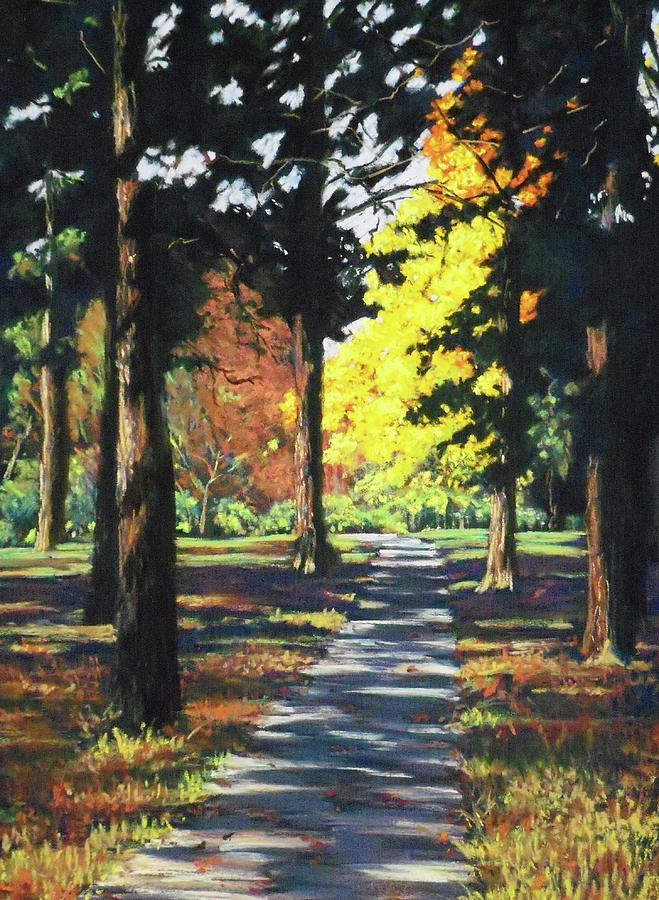 Sun-Shade Path by Diana Colgate