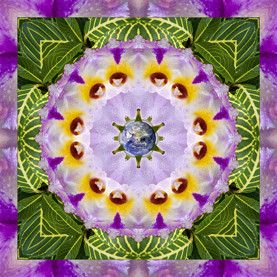 Mandalas Photograph - Sun Shower by Bell And Todd