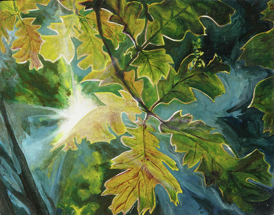Sun Through Oak Leaves by Lynn Hansen