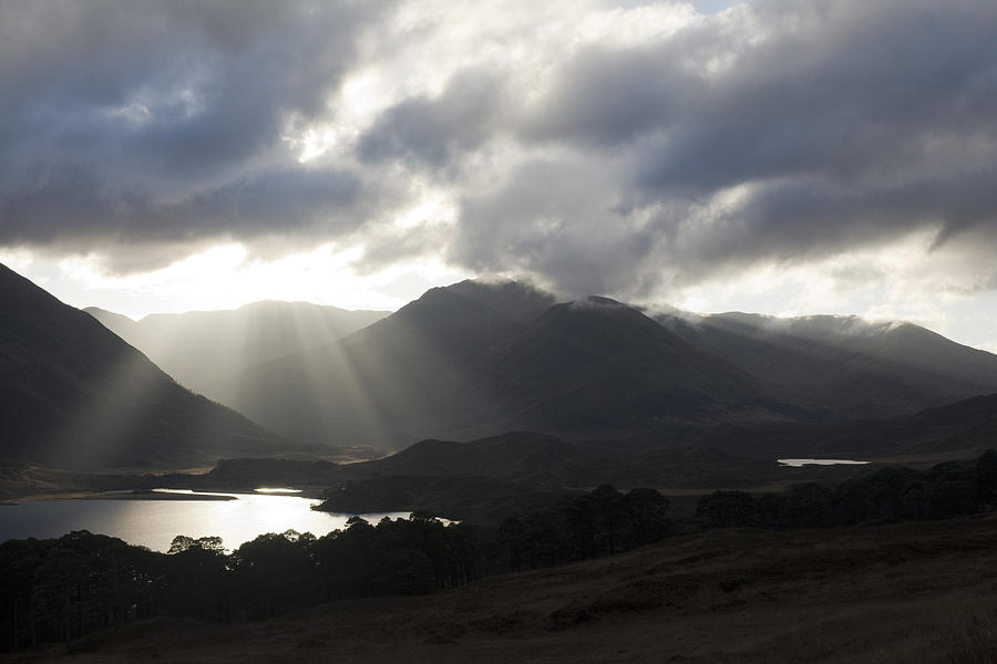 Sunbeams Photograph - Sunbeams In Glen Affric by Sue Arber