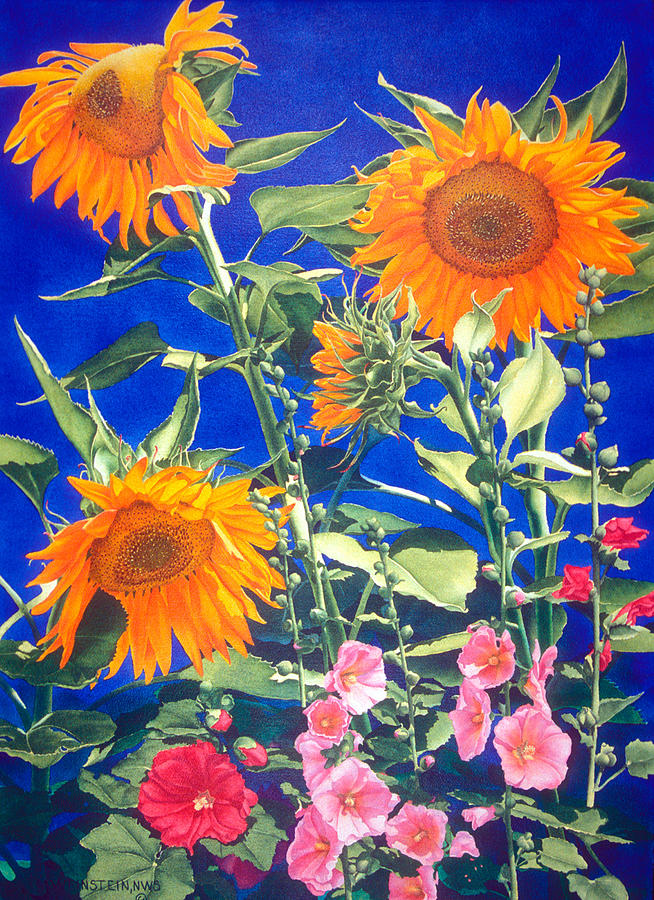 Floral Print - Suncatchers by Mary Backer