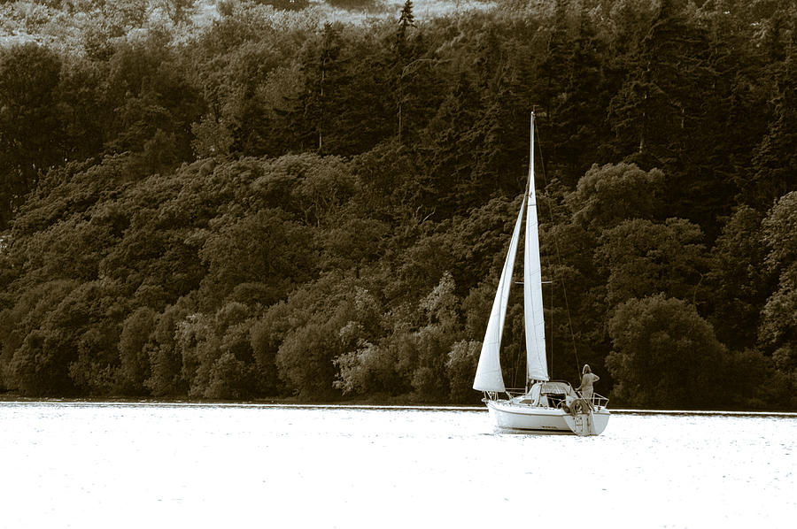 Sailing Boat Photograph - Sunday Sailor by Andy Smy