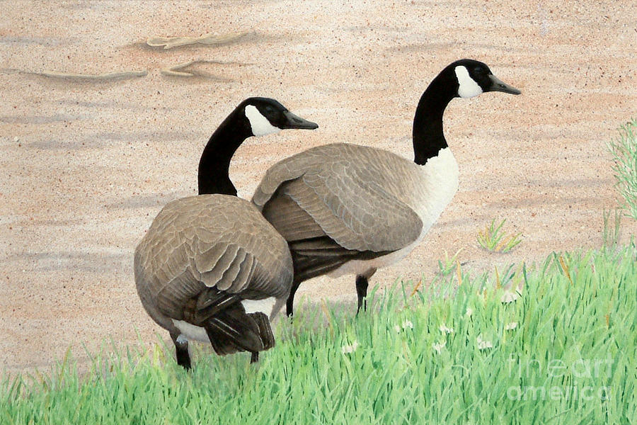 Geese Painting - Sunday Stroll by Vivian Bound