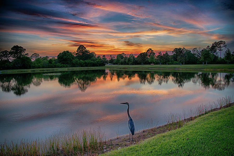 Birds Photograph - Sundown by Don Miller