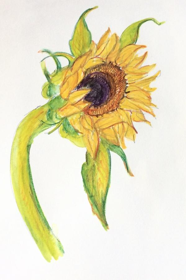 Sunflower 1 by Wendy Le Ber