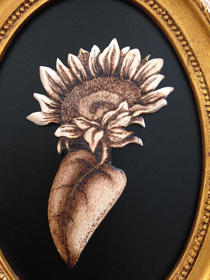 Sunflower Pyrography - Sunflower by Aline Hoffman