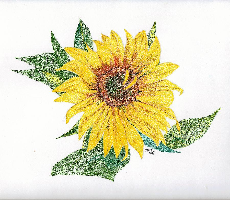 Sunflower Drawing - Sunflower Bliss by Joanne Dour