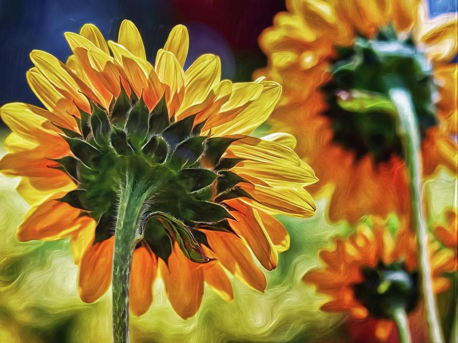 Sunflower City Digital Art by Doctor MEHTA