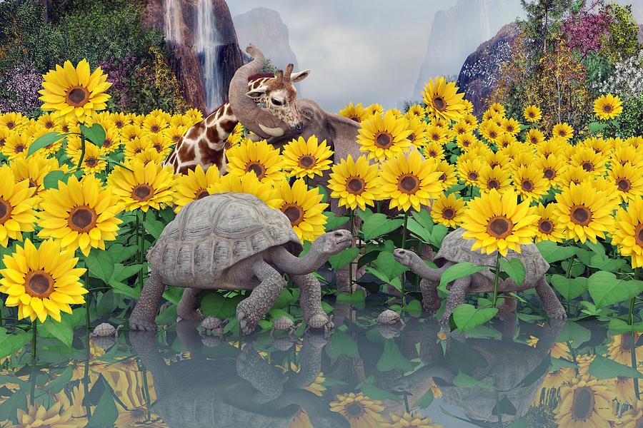 Sunflower Digital Art - Sunflower Daydream  by Betsy Knapp