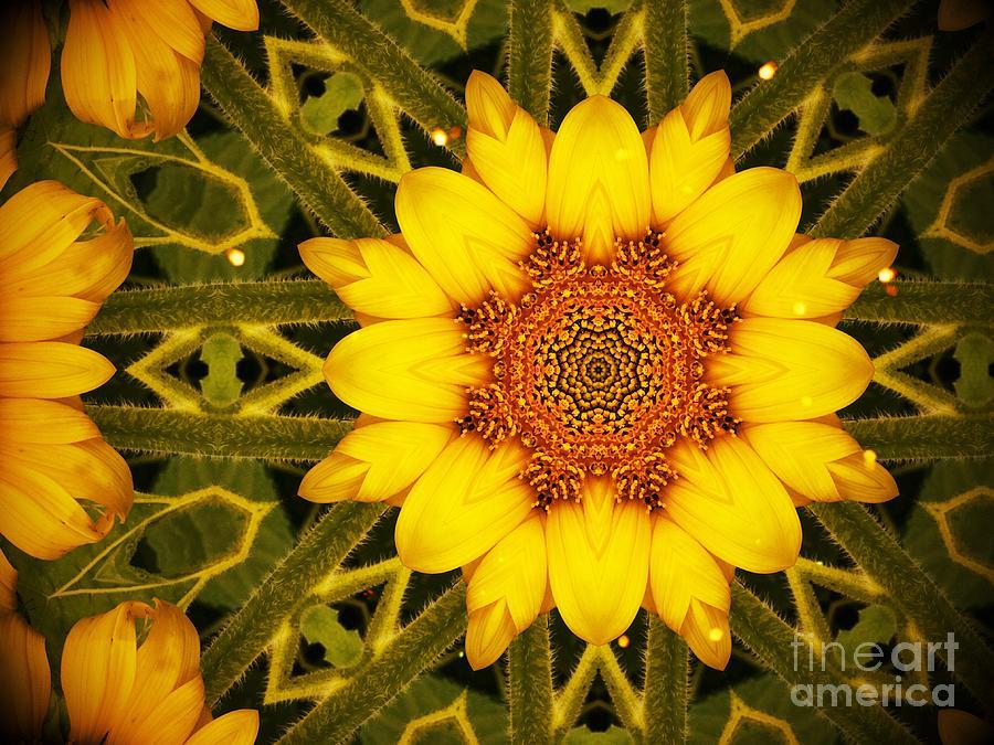 Sunflower Daze by Ever-Curious Geek