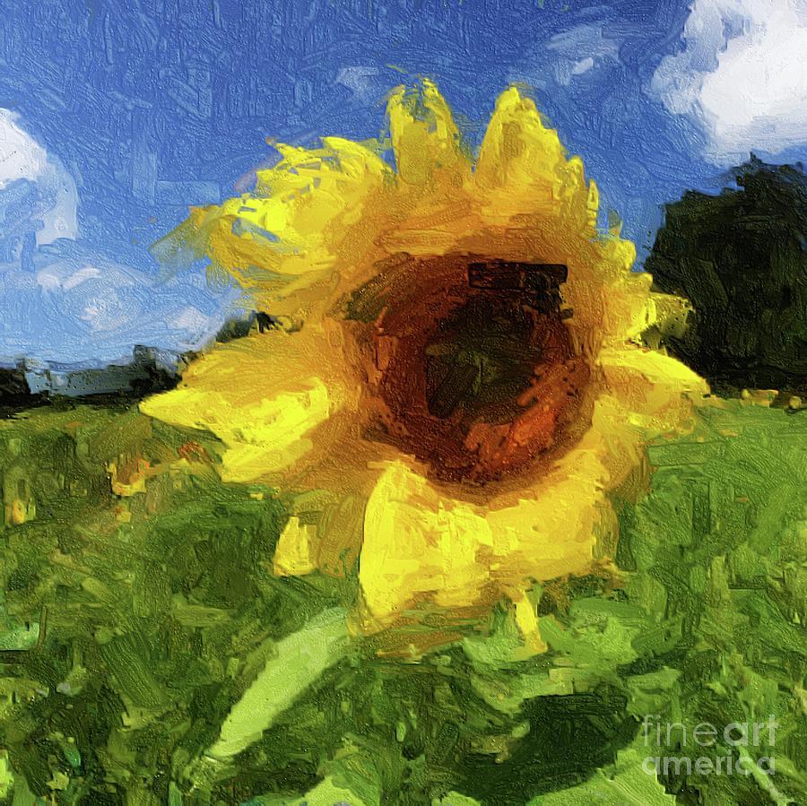 Sunflower by Eleanor Abramson