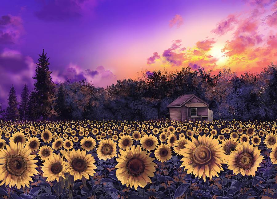 Sunflower Field Purple Painting By Bekim Art