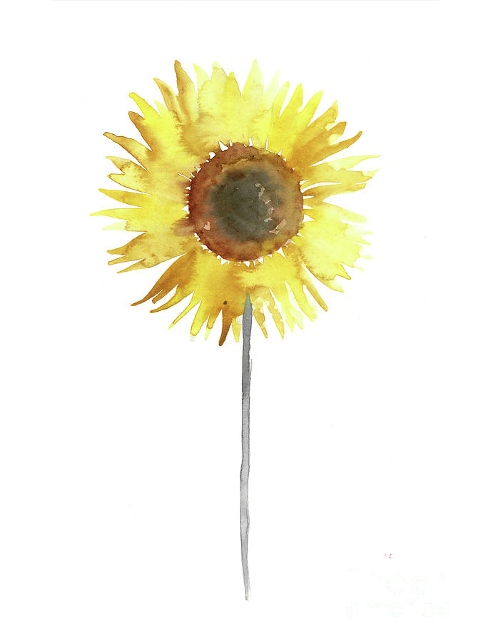 Sunflower floral display yellow brown gray watercolor painting by joanna szmerdt painting painting sunflower floral display yellow brown gray watercolor painting by joanna szmerdt mightylinksfo
