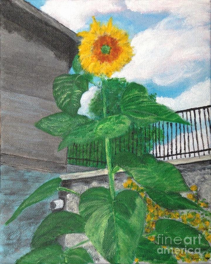 Flowers Painting - Sunflower by Joel Charles