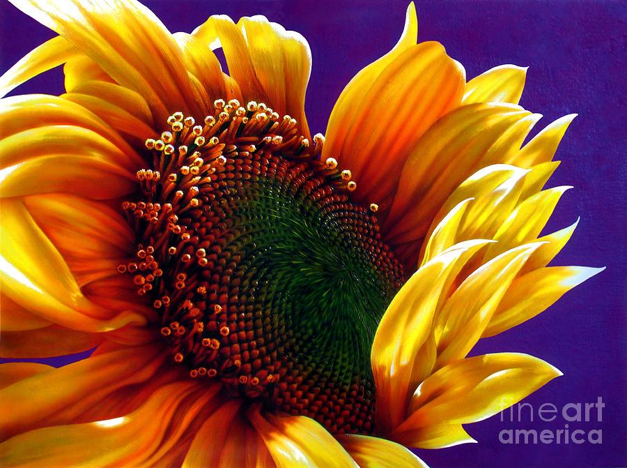 Flowers Painting - Sunflower by Jurek Zamoyski