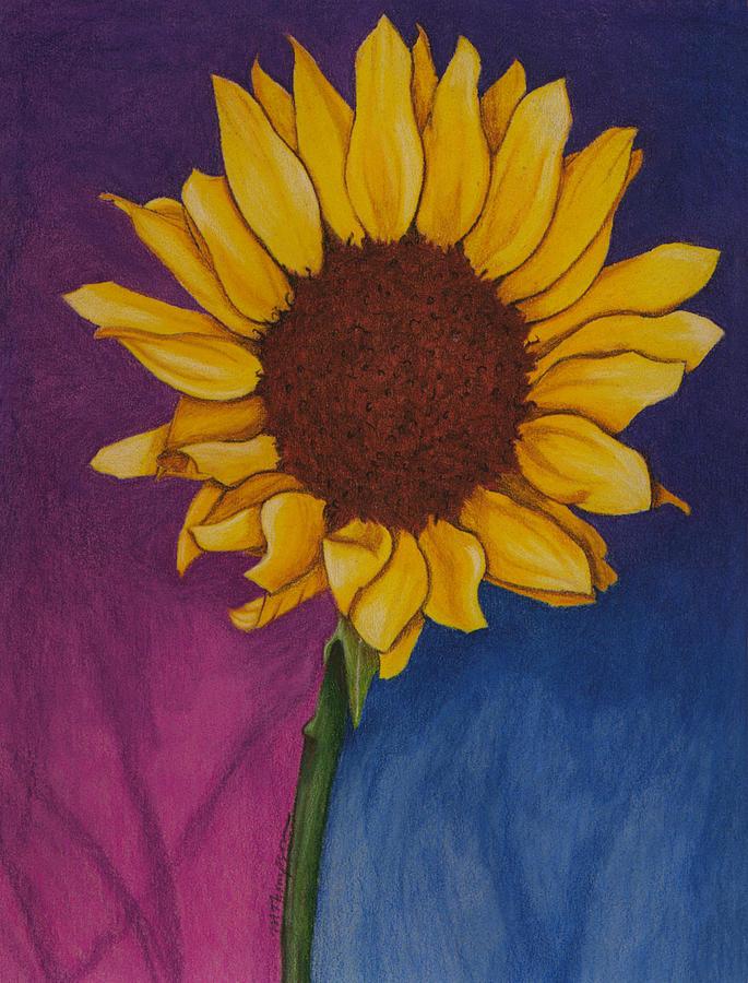 Sunflower Mixed Media - Sunflower by Mary Elizabeth Thompson