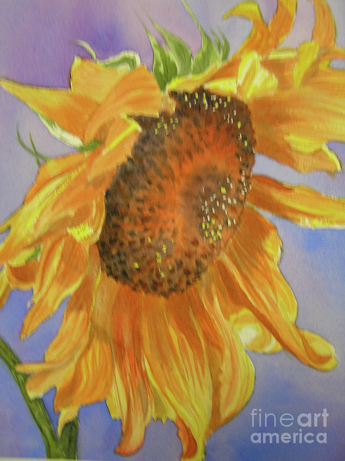 Sunflower Painting - Sunflower by Midge Pippel