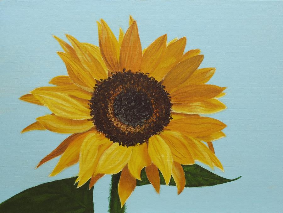 Oil Painting - Sunflower by Nolan Clark