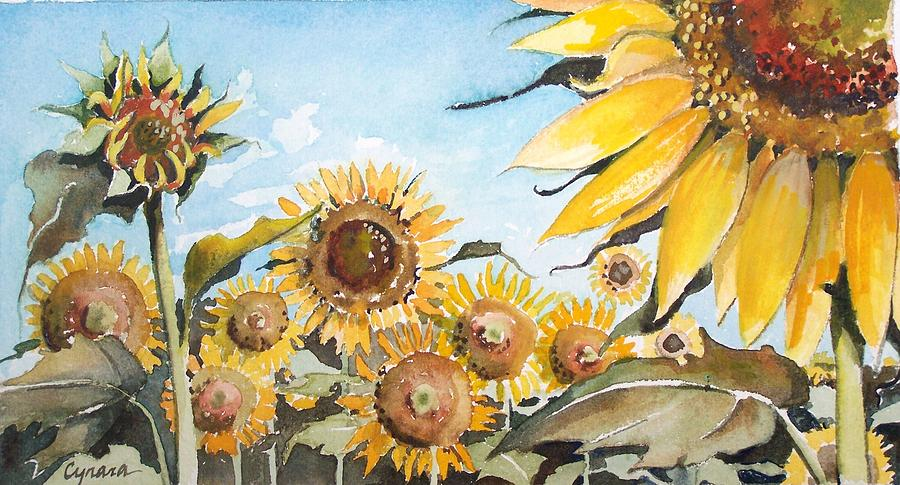 Sunflower Field Painting - Sunflower Patch Wc Study One by Cynara Shelton
