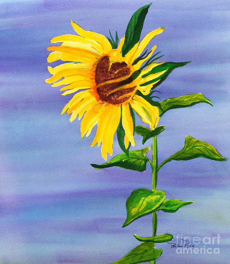 Sunflower Painting - Sunflower by Pauline Ross
