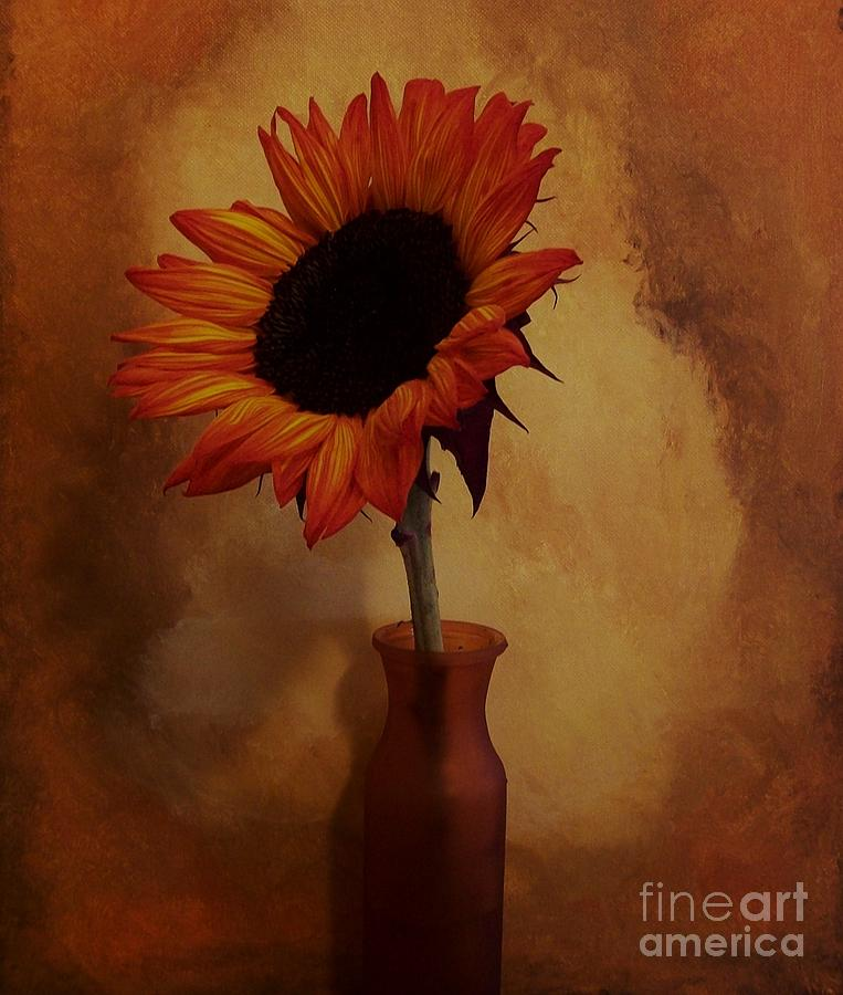 Photo Photograph - Sunflower Seed Maker by Marsha Heiken