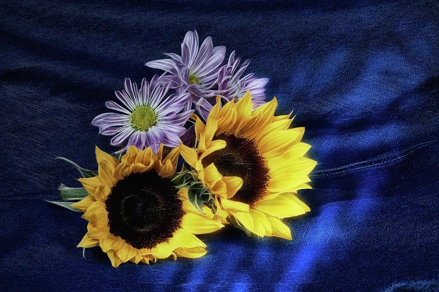 Annual Photograph - Sunflowers And Daisies by Tom Mc Nemar