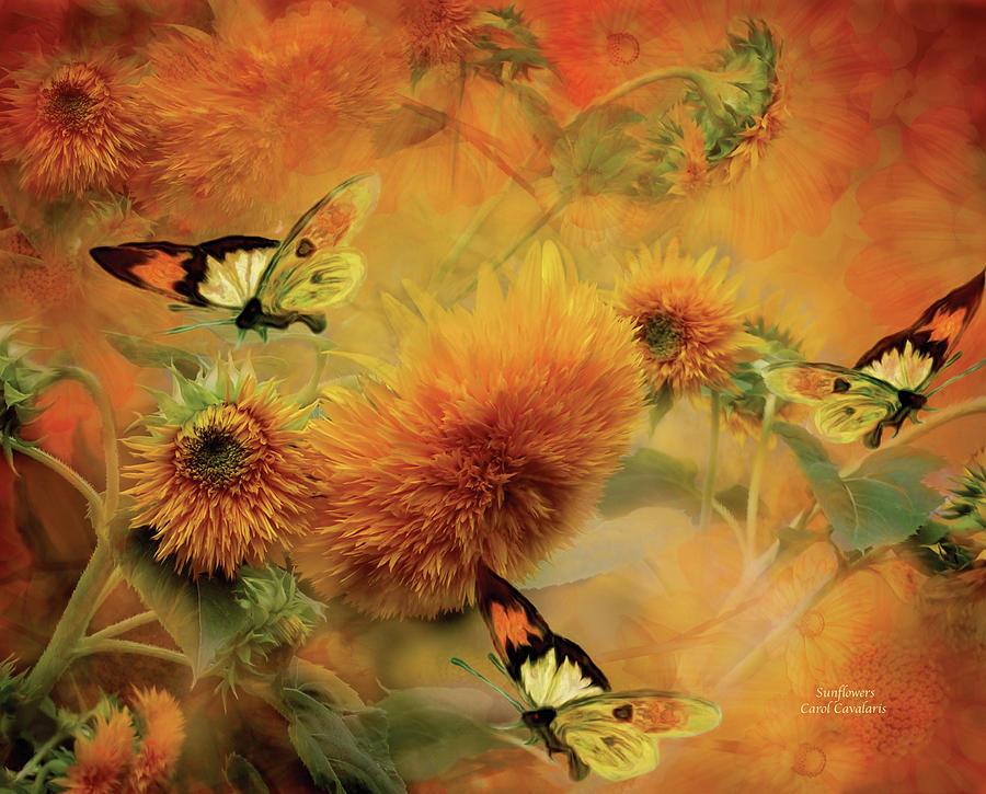 Sunflower Mixed Media - Sunflowers by Carol Cavalaris