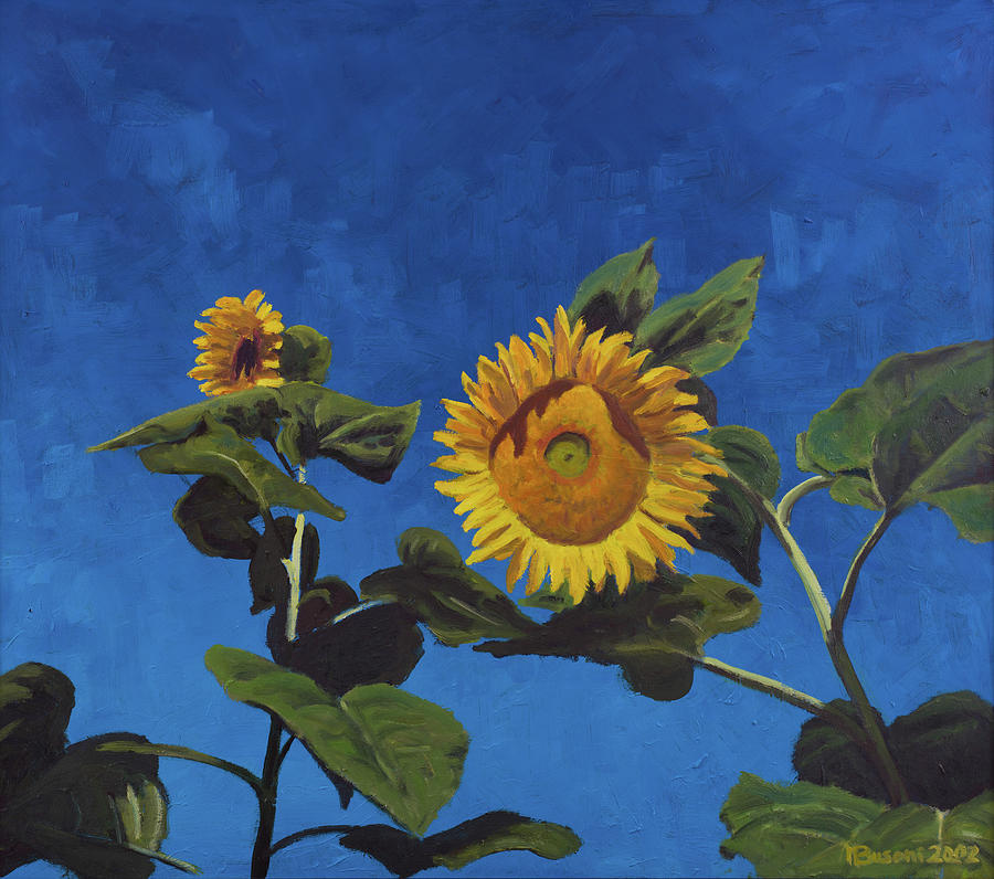 Sun Painting - Sunflowers by Marco Busoni