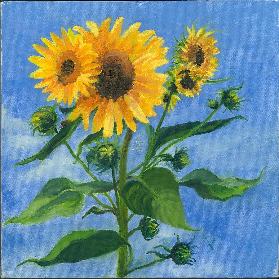 Sunflowers on Bauer Farm by Paula Emery