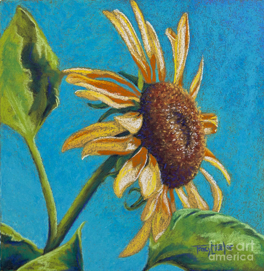 Flower Pastel - Sunflowers Shine by Tracy L Teeter