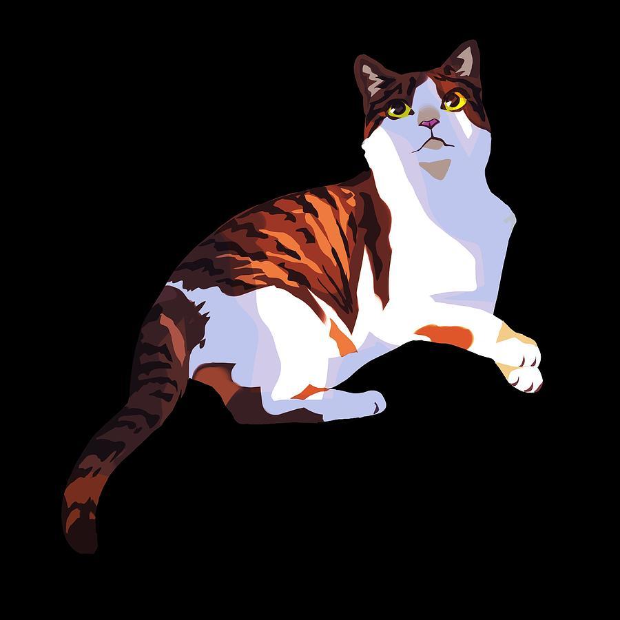 Cats Digital Art - Sunlight And Shade by Ellan Suder