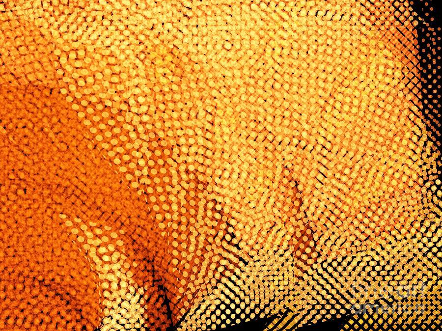 Vivid Digital Art - Sunlight by Cooky Goldblatt