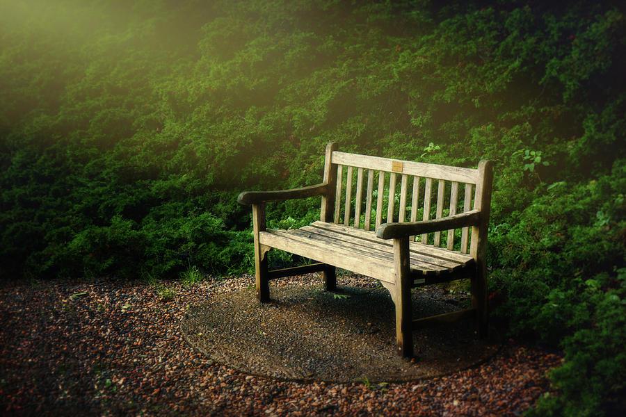 Beautiful Photograph - Sunlight On Park Bench by Tom Mc Nemar