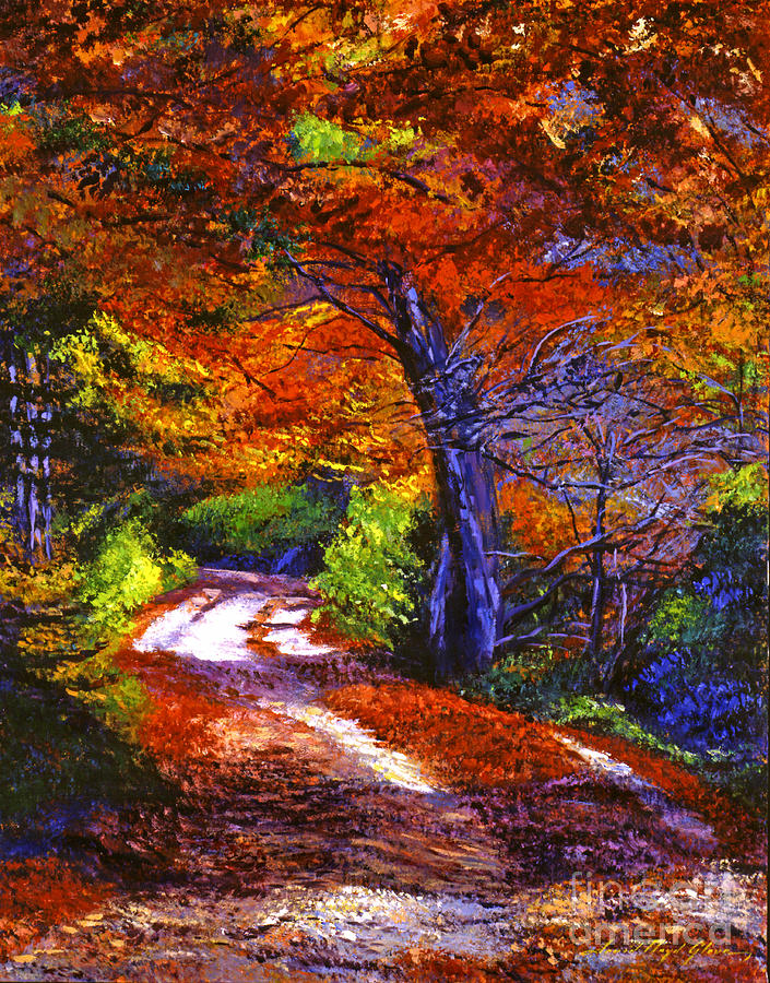 Autumn Painting - Sunlight Through The Trees by David Lloyd Glover