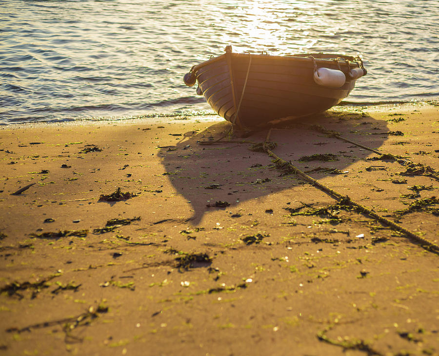 Beach Photograph - Sunlit Beach by A J Paul