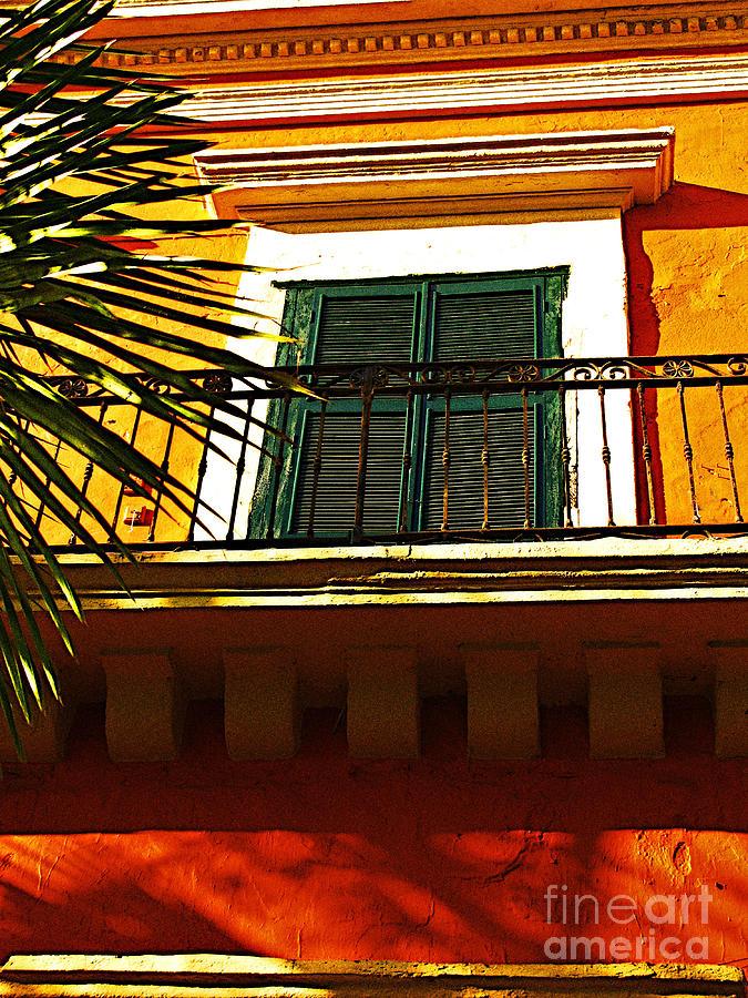 Michael Fitzpatrick Photograph - Sunlit By Michael Fitzpatrick by Mexicolors Art Photography
