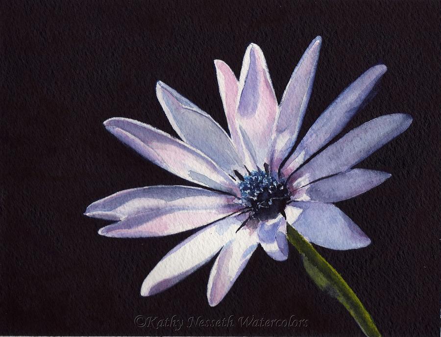 Sunlit Daisy Painting - Sunlit Daisy by Kathy Nesseth