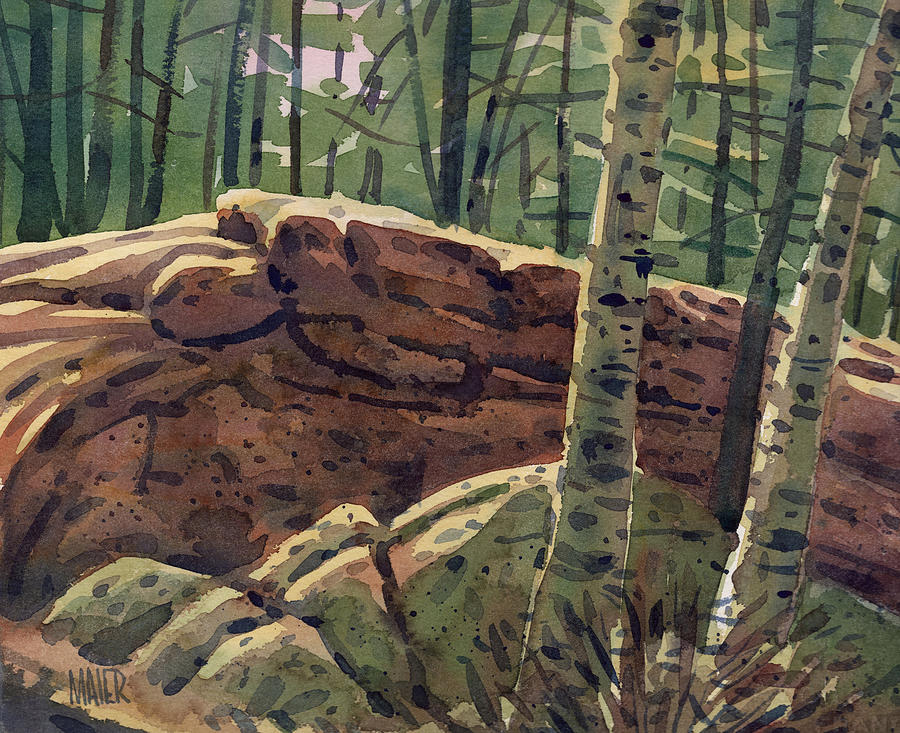 White Birch Painting - Sunlit Rocks by Donald Maier