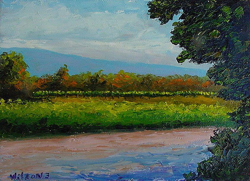 Landscape Painting - Sunlit Vinyard by Fred Wilson