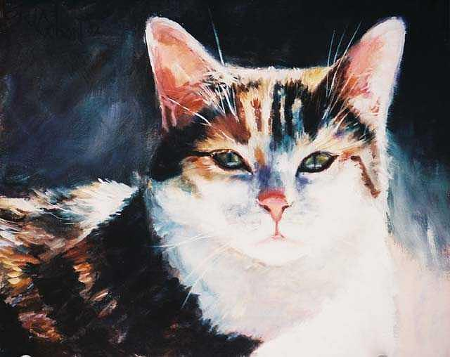 Calico Cat Painting - Sunning by Billie Colson