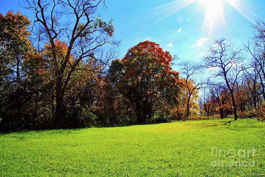 Sunny Fall Day Photograph