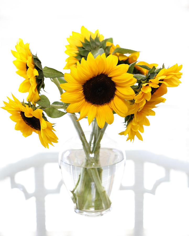 Sunny Vase Of Sunflowers Photograph By Marilyn Hunt