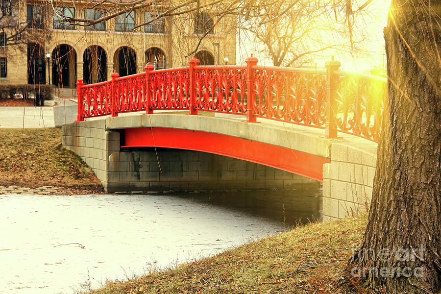 Sunrays Over Bridge Photograph