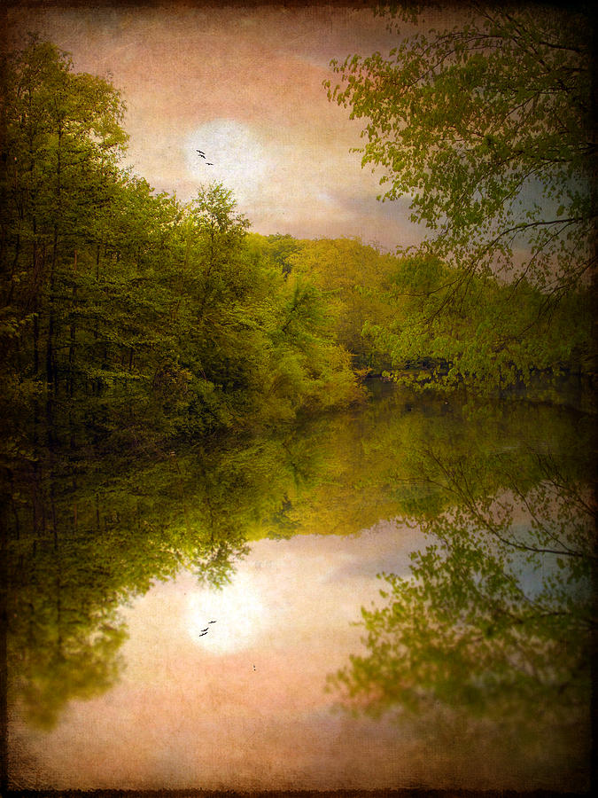 Nature Photograph - Sunrise 2 by Jessica Jenney